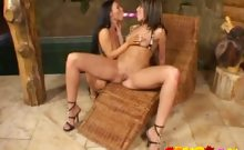 Two enticing lesbian vixens sharing a massive pink dildo